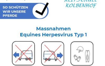 Massnahmen Equines Herpesvirus Typ 1 (EHV-1)
